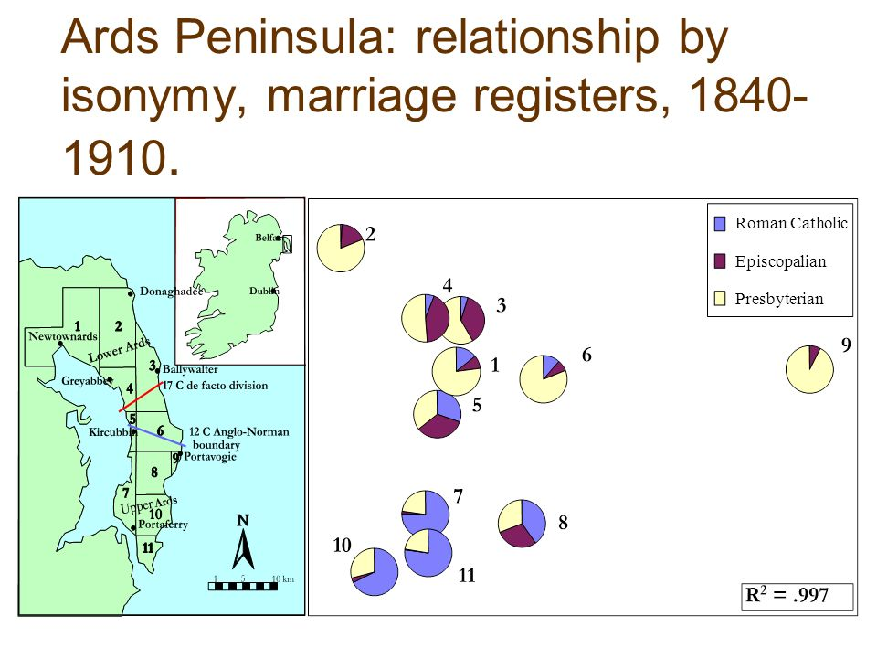 Ards Peninsula: relationship by isonymy, marriage registers,