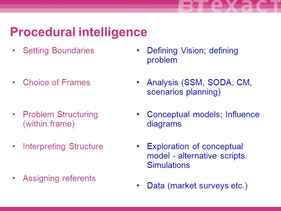 Procedural intelligence Setting Boundaries Choice of Frames Problem Structuring (within frame) Interpreting Structure Assigning referents Defining Vision; defining problem Analysis (SSM, SODA, CM, scenarios planning) Conceptual models; Influence diagrams Exploration of conceptual model - alternative scripts.
