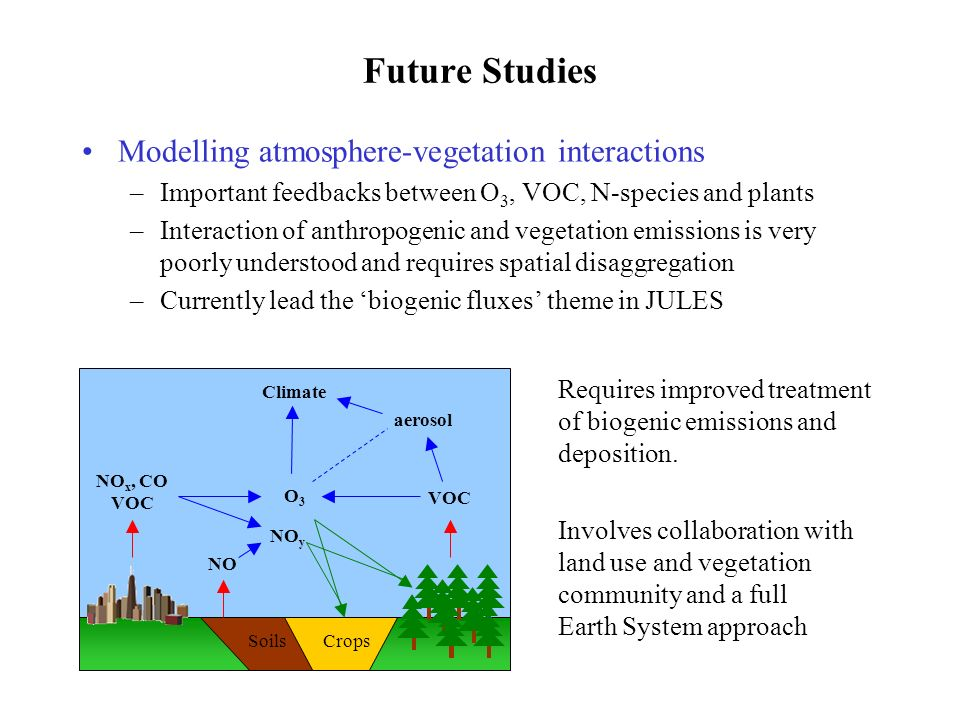 Future Studies Modelling atmosphere-vegetation interactions –Important feedbacks between O 3, VOC, N-species and plants –Interaction of anthropogenic and vegetation emissions is very poorly understood and requires spatial disaggregation –Currently lead the biogenic fluxes theme in JULES SoilsCrops Requires improved treatment of biogenic emissions and deposition.