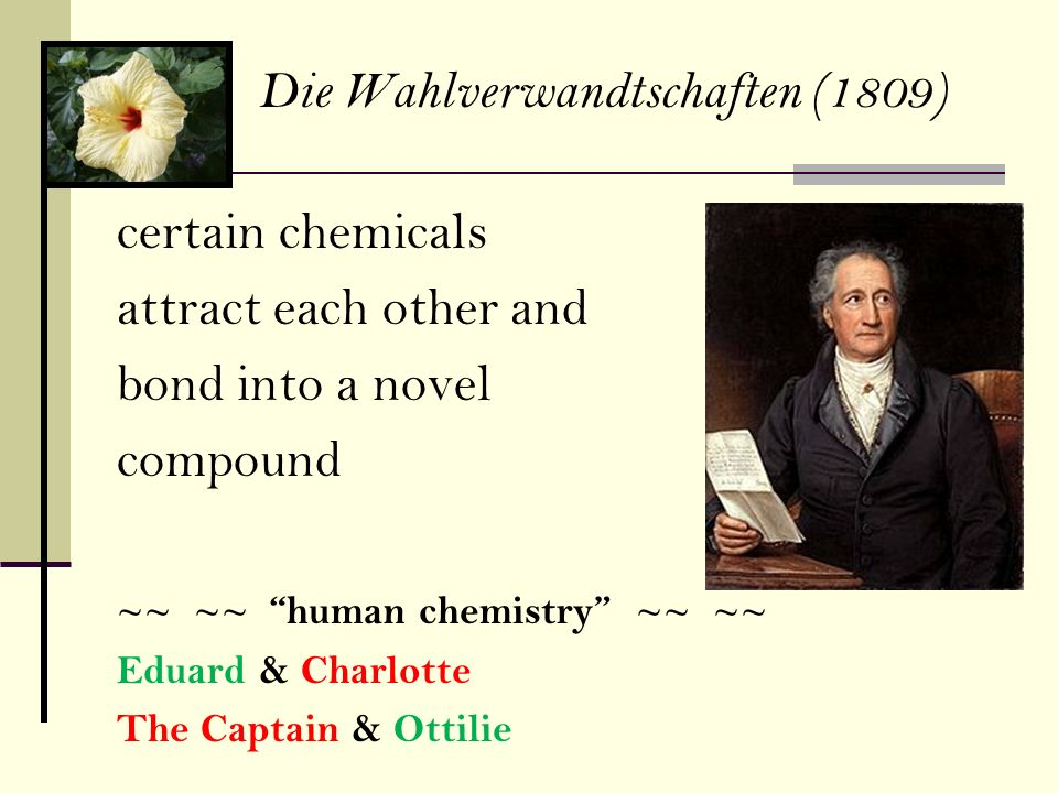 certain chemicals attract each other and bond into a novel compound ~~ ~~ human chemistry ~~ ~~ Eduard & Charlotte The Captain & Ottilie Die Wahlverwa