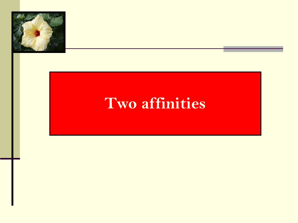 Two affinities