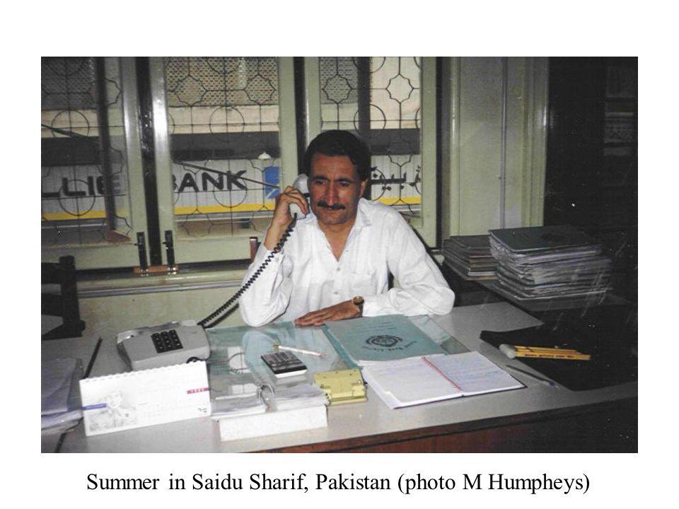 Summer in Saidu Sharif, Pakistan (photo M Humpheys)