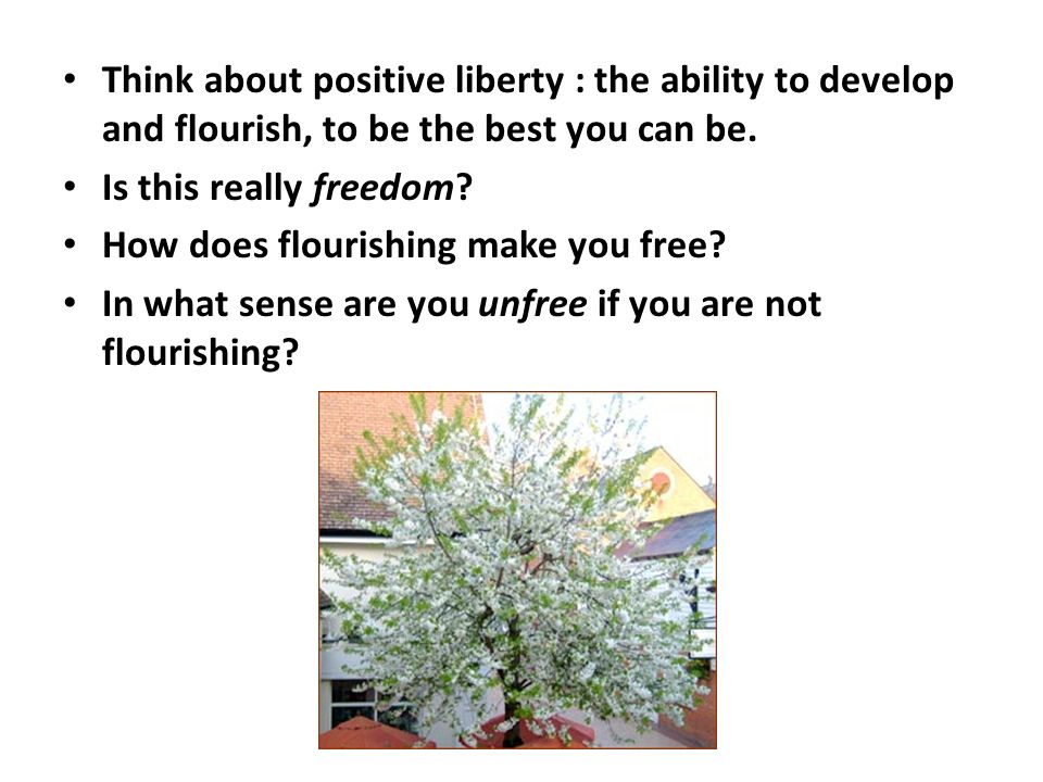 Think about positive liberty : the ability to develop and flourish, to be the best you can be. Is this really freedom? How does flourishing make you f