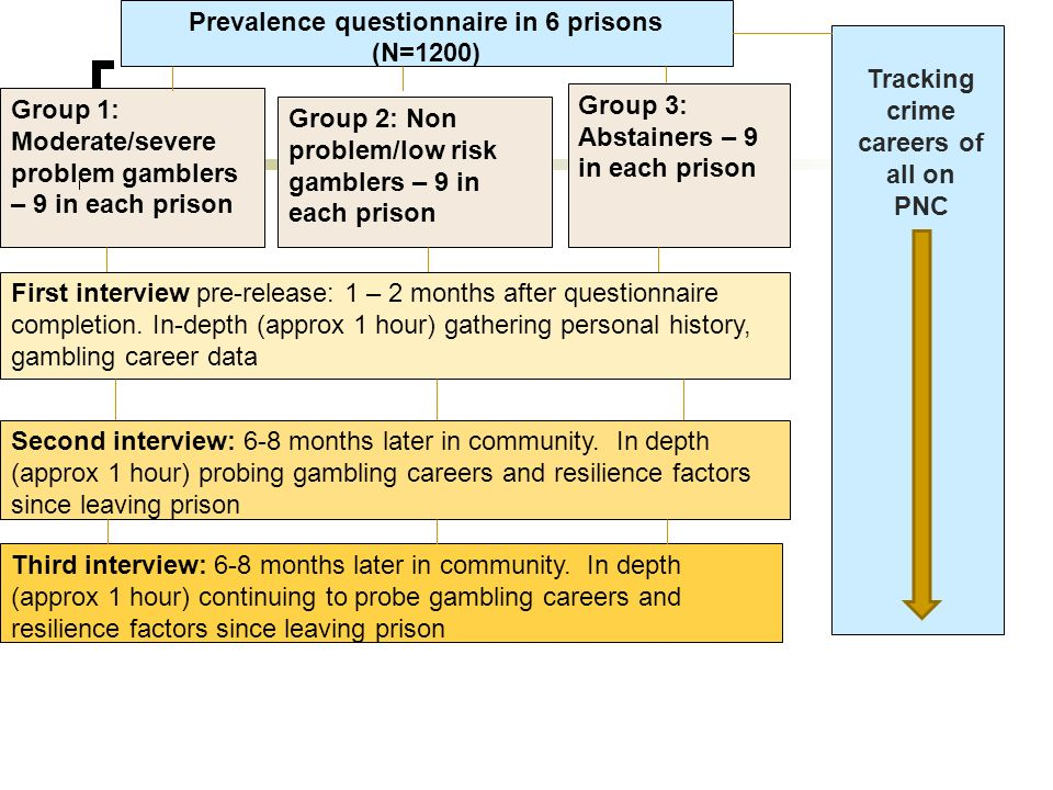 Prevalence questionnaire in 6 prisons (N=1200) Group 1: Moderate/severe problem gamblers – 9 in each prison Group 2: Non problem/low risk gamblers – 9 in each prison Group 3: Abstainers – 9 in each prison First interview pre-release: 1 – 2 months after questionnaire completion.