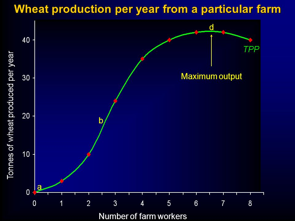 Wheat production per year from a particular farm Number of farm workers Tonnes of wheat produced per year TPP a b d Maximum output