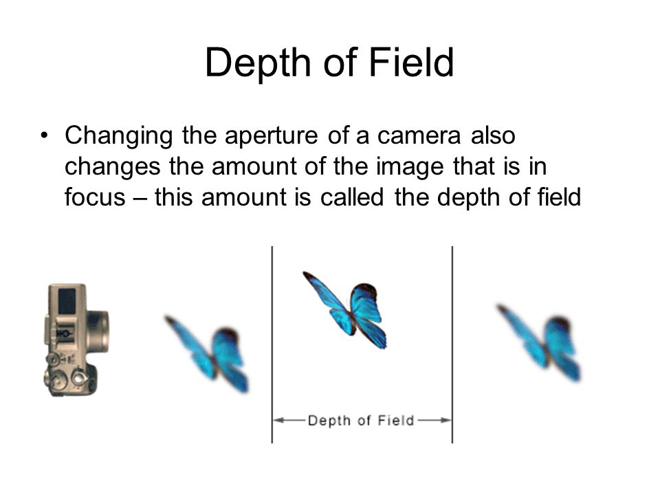 Depth of Field Changing the aperture of a camera also changes the amount of the image that is in focus – this amount is called the depth of field