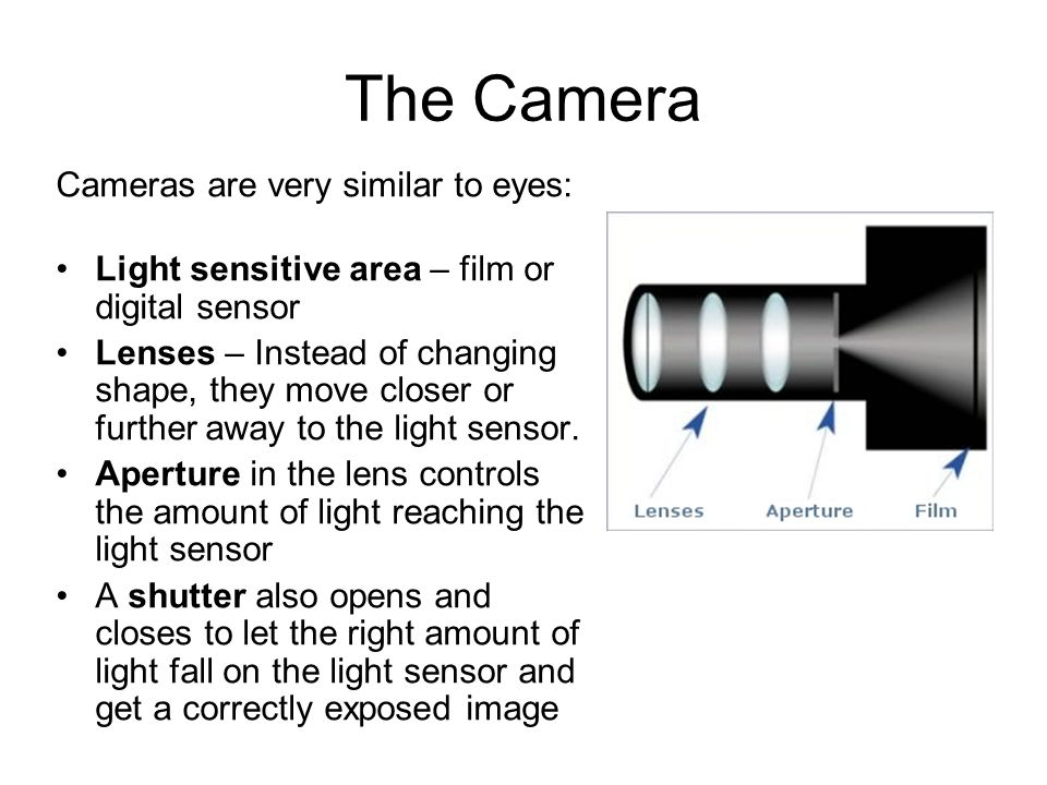 The Camera Cameras are very similar to eyes: Light sensitive area – film or digital sensor Lenses – Instead of changing shape, they move closer or fur