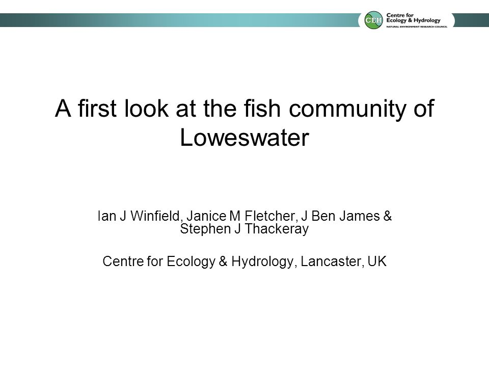 Fish abundance and phosphorus concentrations Winfield, I.