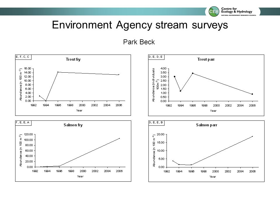 Park Beck Environment Agency stream surveys