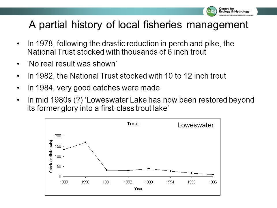 A partial history of local fisheries management In 1978, following the drastic reduction in perch and pike, the National Trust stocked with thousands of 6 inch trout No real result was shown In 1982, the National Trust stocked with 10 to 12 inch trout In 1984, very good catches were made In mid 1980s ( ) Loweswater Lake has now been restored beyond its former glory into a first-class trout lake Loweswater