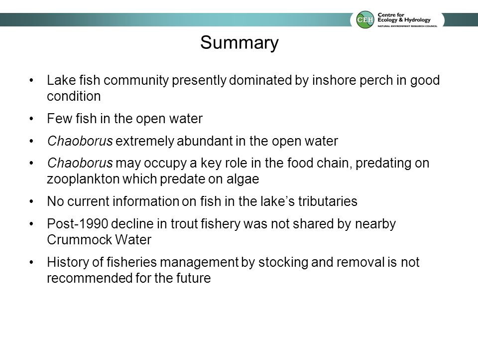 Summary Lake fish community presently dominated by inshore perch in good condition Few fish in the open water Chaoborus extremely abundant in the open water Chaoborus may occupy a key role in the food chain, predating on zooplankton which predate on algae No current information on fish in the lakes tributaries Post-1990 decline in trout fishery was not shared by nearby Crummock Water History of fisheries management by stocking and removal is not recommended for the future
