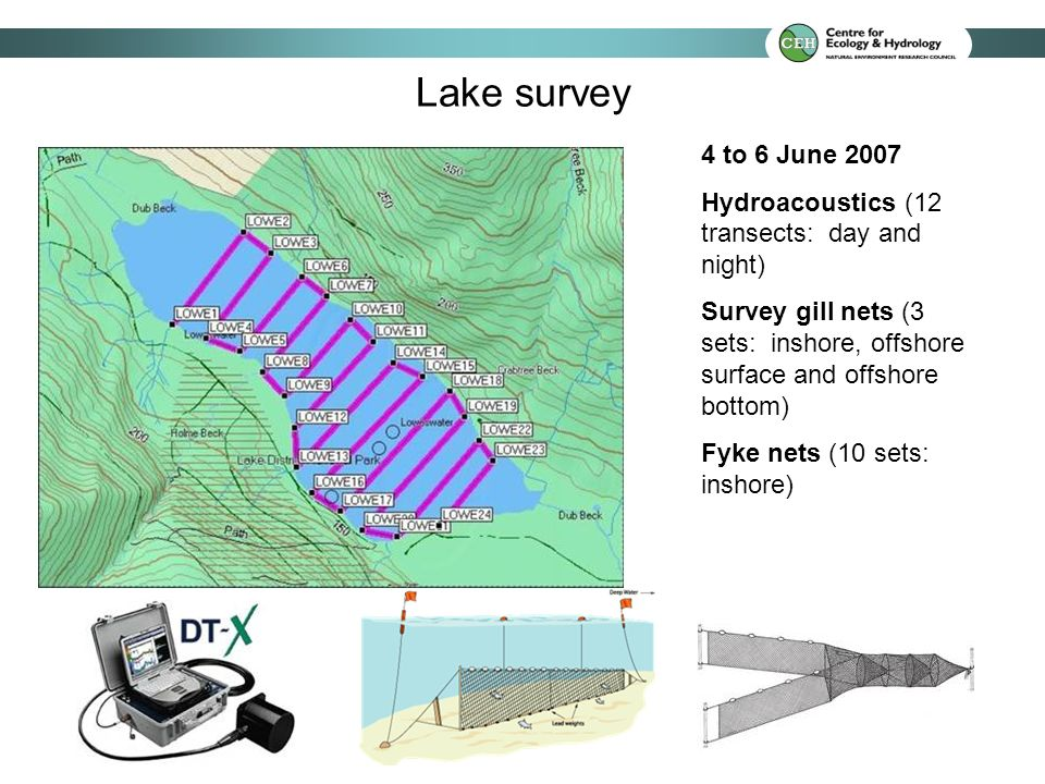 Survey gill nets (inshore: 71 perch (79 to 367 mm); offshore surface: 3 brown trout; offshore bottom: no fish) Fyke nets (inshore: 1 minnow, 10 perch) [Pike also known to be present] Netting findings