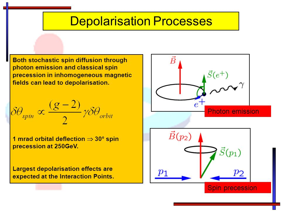 Both stochastic spin diffusion through photon emission and classical spin precession in inhomogeneous magnetic fields can lead to depolarisation. 1 mr