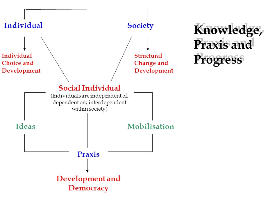 IndividualSociety Social Individual (Individuals are independent of, dependent on; interdependent within society) Individual Choice and Development Structural Change and Developmen t IdeasMobilisation Praxis Development and Democracy Knowledge, Praxis and Progress