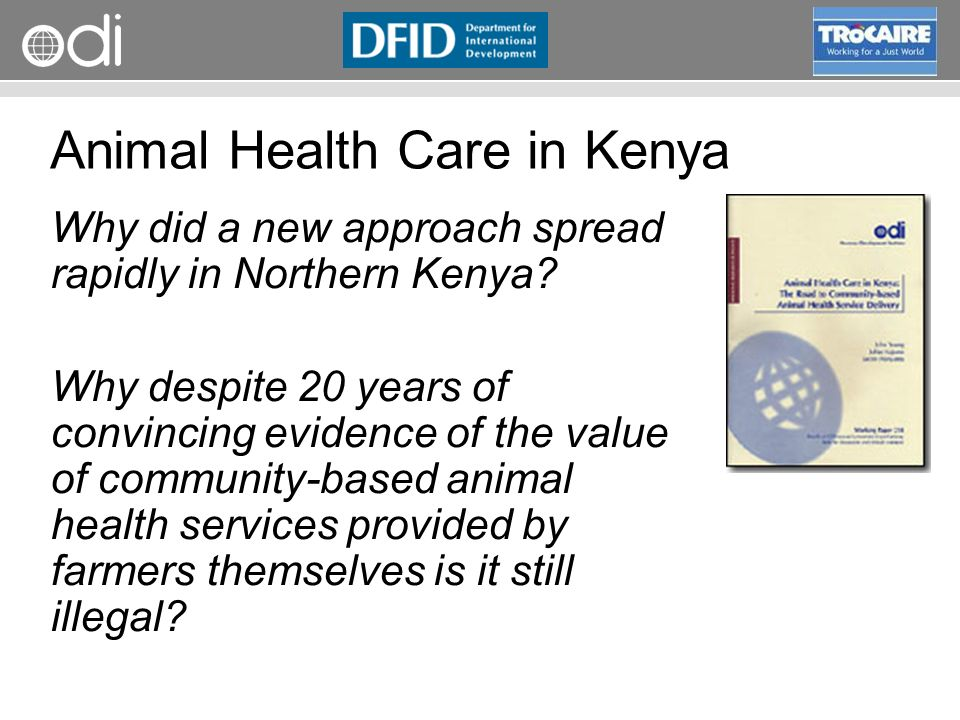 RAPID Programme Animal Health Care in Kenya Why did a new approach spread rapidly in Northern Kenya.