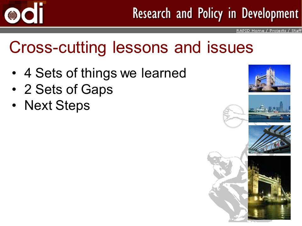 Cross-cutting lessons and issues 4 Sets of things we learned 2 Sets of Gaps Next Steps