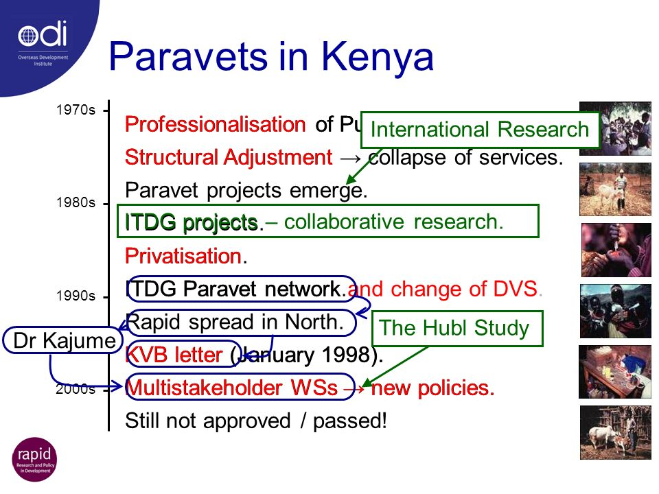 Professionalisation of Public Services. Structural Adjustment collapse of services. Paravet projects emerge. ITDG projects. Privatisation. ITDG Parave
