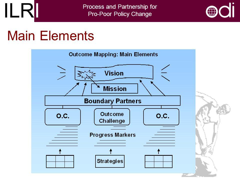 ILRI Process and Partnership for Pro-Poor Policy Change Main Elements
