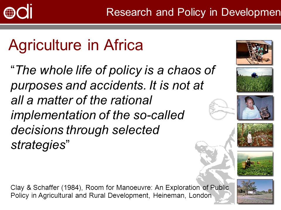 Research and Policy in Development Agriculture in Africa The whole life of policy is a chaos of purposes and accidents. It is not at all a matter of t
