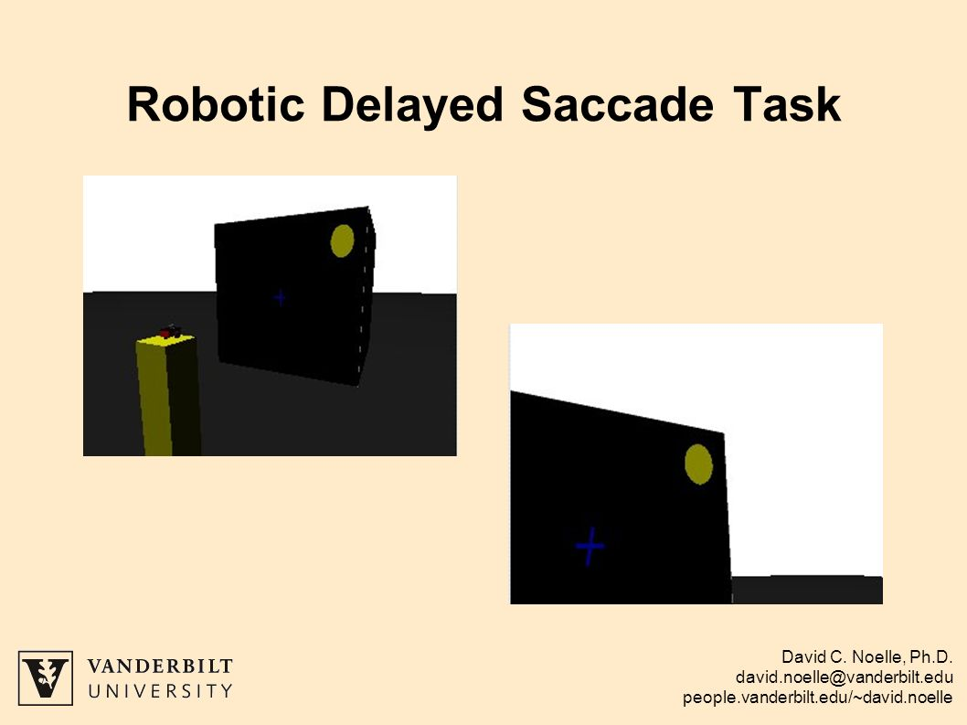 David C. Noelle, Ph.D. david.noelle@vanderbilt.edu people.vanderbilt.edu/~david.noelle Robotic Delayed Saccade Task