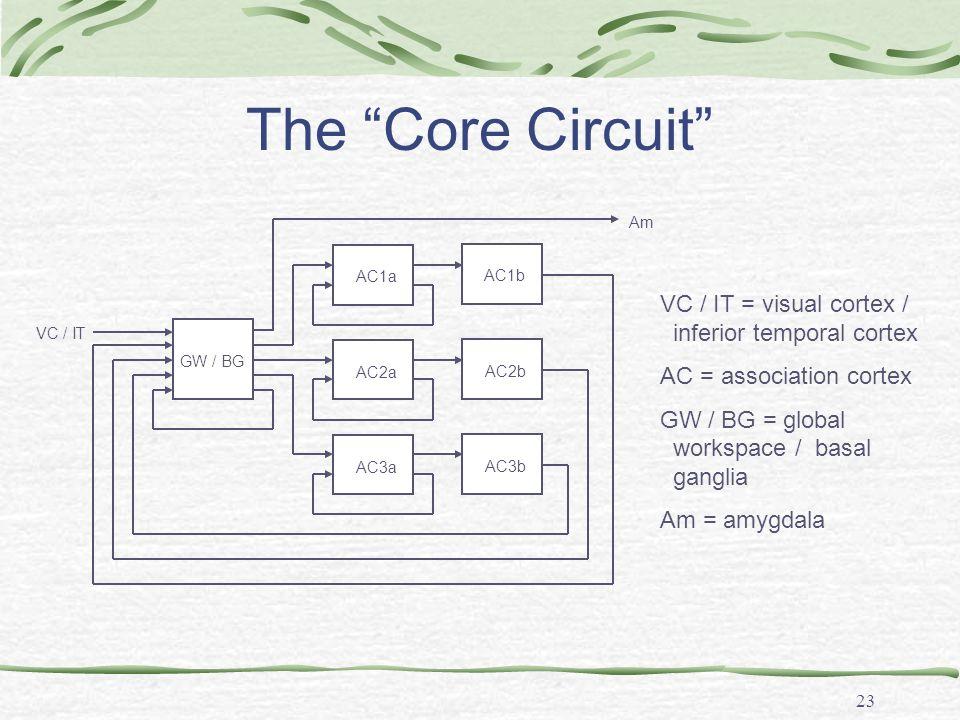 23 The Core Circuit VC / IT = visual cortex / inferior temporal cortex AC = association cortex GW / BG = global workspace / basal ganglia Am = amygdal