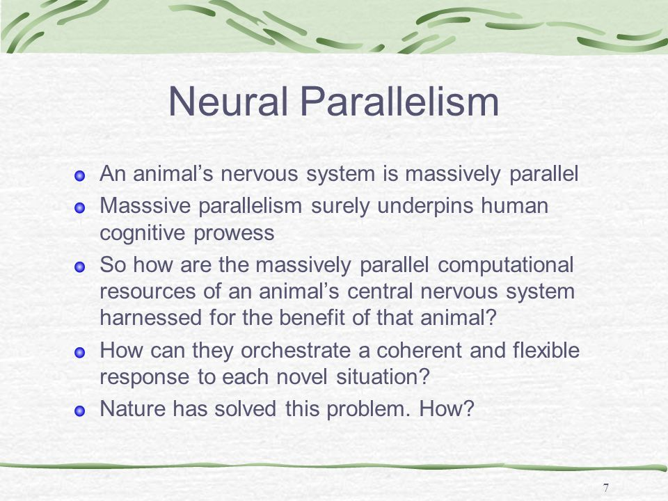 7 Neural Parallelism An animals nervous system is massively parallel Masssive parallelism surely underpins human cognitive prowess So how are the mass