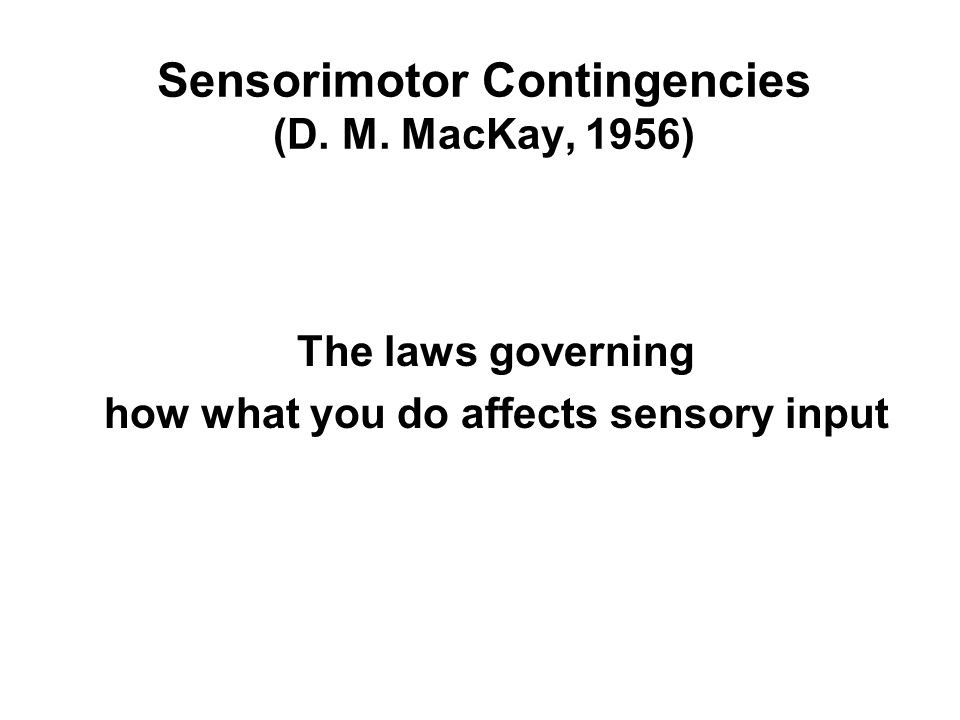 The laws governing how what you do affects sensory input Sensorimotor Contingencies (D.