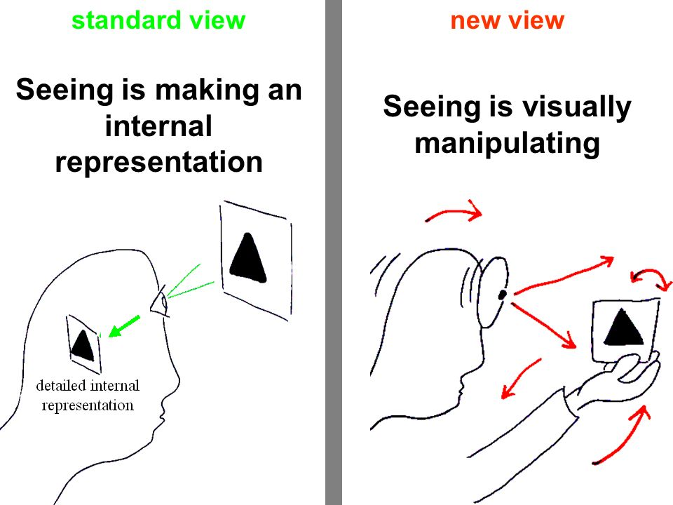 Seeing is making an internal representation Seeing is visually manipulating standard viewnew view