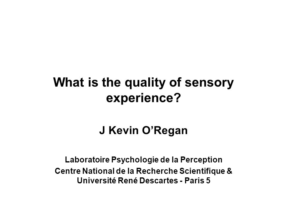 What is the quality of sensory experience.