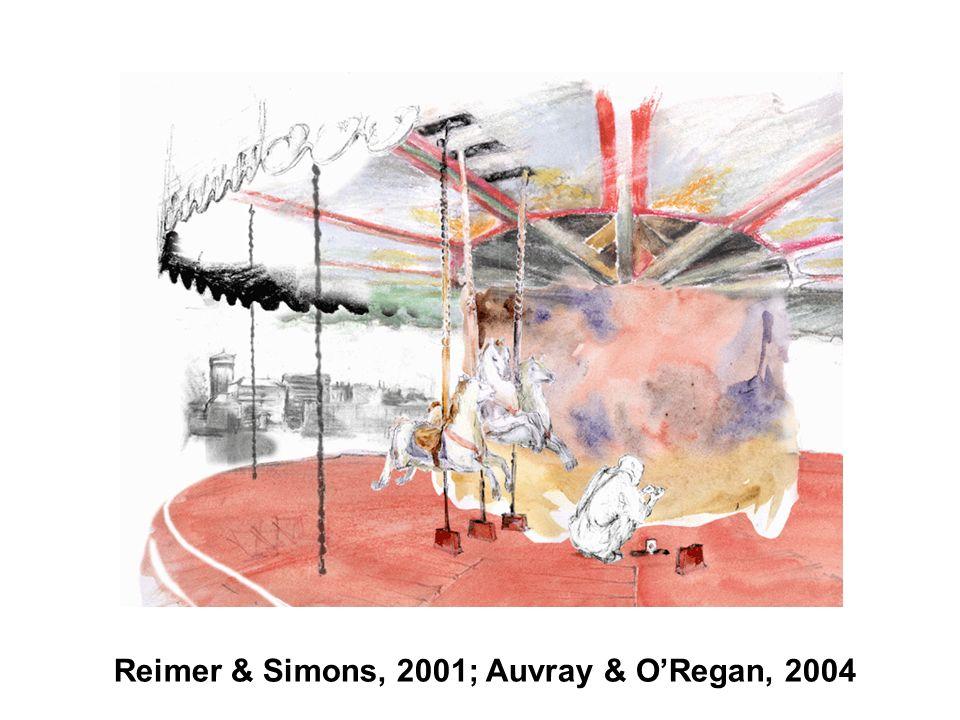 Reimer & Simons, 2001; Auvray & ORegan, 2004