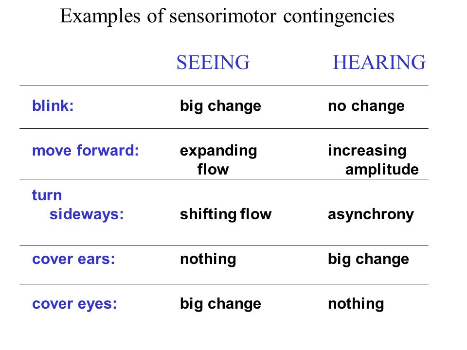 big change expanding flow shifting flow nothing big change no change increasing amplitude asynchrony big change nothing blink: move forward: turn sideways: cover ears: cover eyes: SEEING HEARING Examples of sensorimotor contingencies