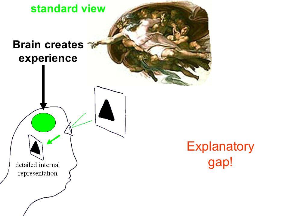 Brain creates experience standard view Explanatory gap!