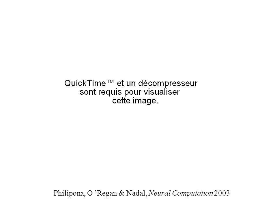 Philipona, O Regan & Nadal, Neural Computation 2003
