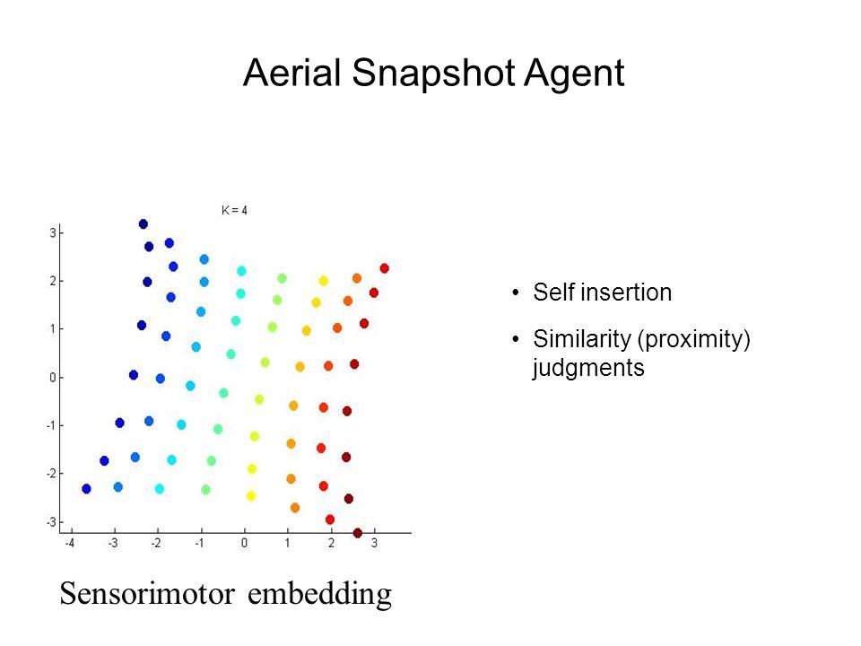 Aerial Snapshot Agent Sensorimotor embedding Self insertion Similarity (proximity) judgments