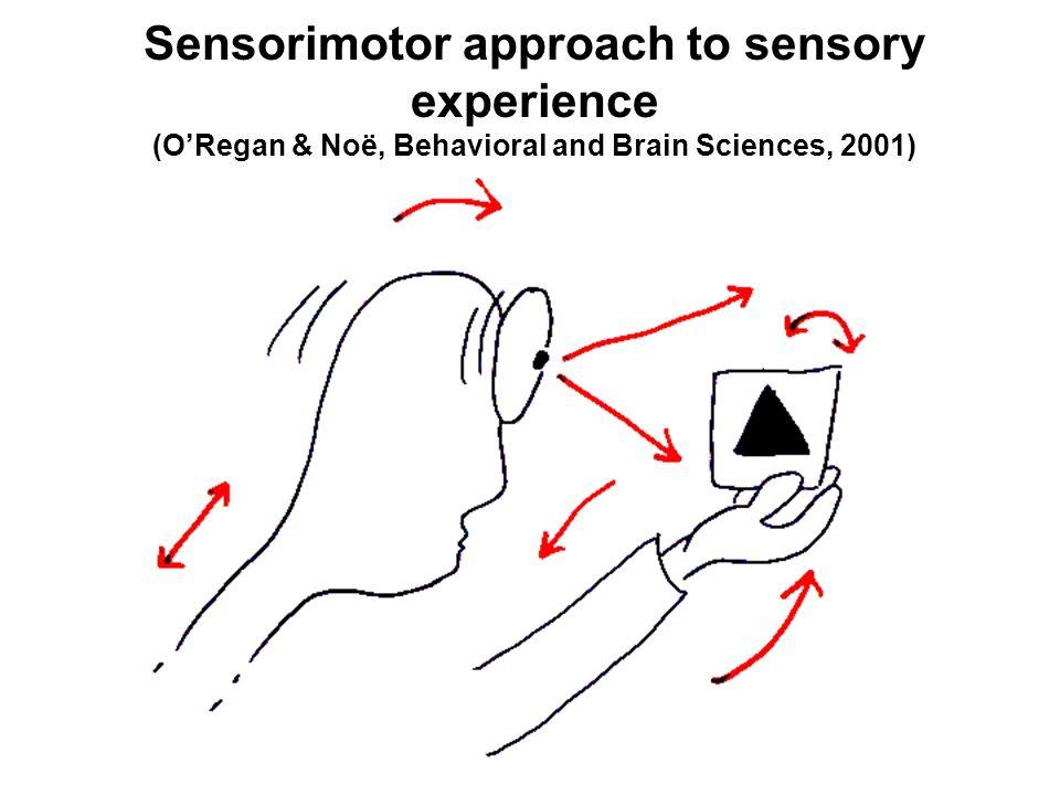 Sensorimotor approach to sensory experience (ORegan & Noë, Behavioral and Brain Sciences, 2001)