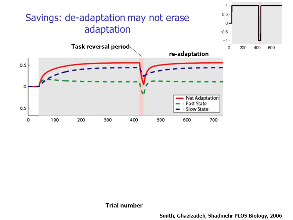 Savings: de-adaptation may not erase adaptation Task reversal period re-adaptation Trial number Smith, Ghazizadeh, Shadmehr PLOS Biology, 2006