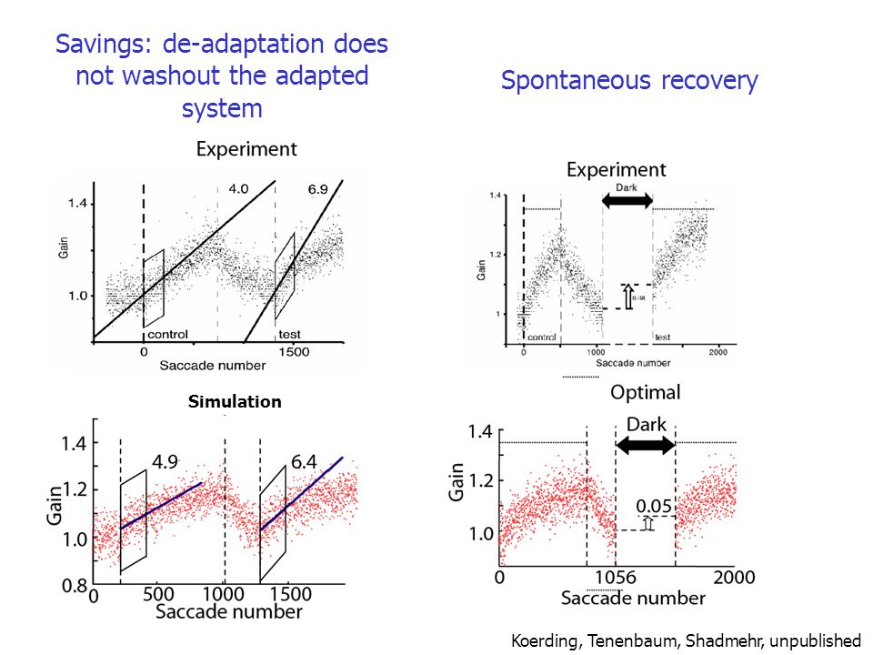 Savings: de-adaptation does not washout the adapted system Simulation Koerding, Tenenbaum, Shadmehr, unpublished Spontaneous recovery