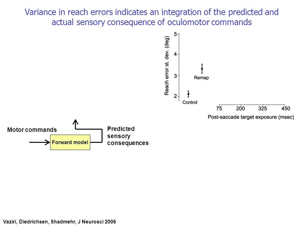 Model 1 (Smith et al.): Error causes changes in multiple adaptive processes.