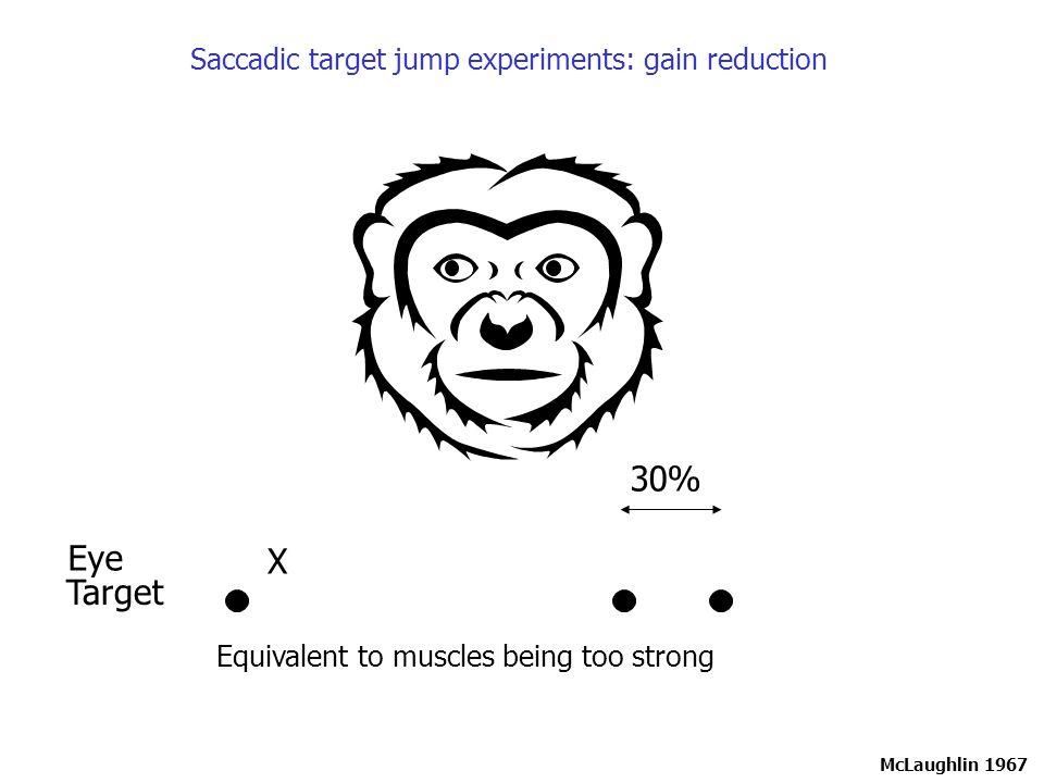 Kojima et al.(2004) J Neurosci 24:7531.