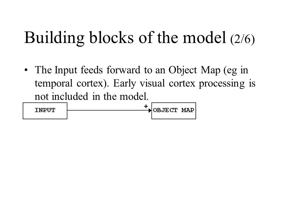 Building blocks of the model (2/6) The Input feeds forward to an Object Map (eg in temporal cortex). Early visual cortex processing is not included in