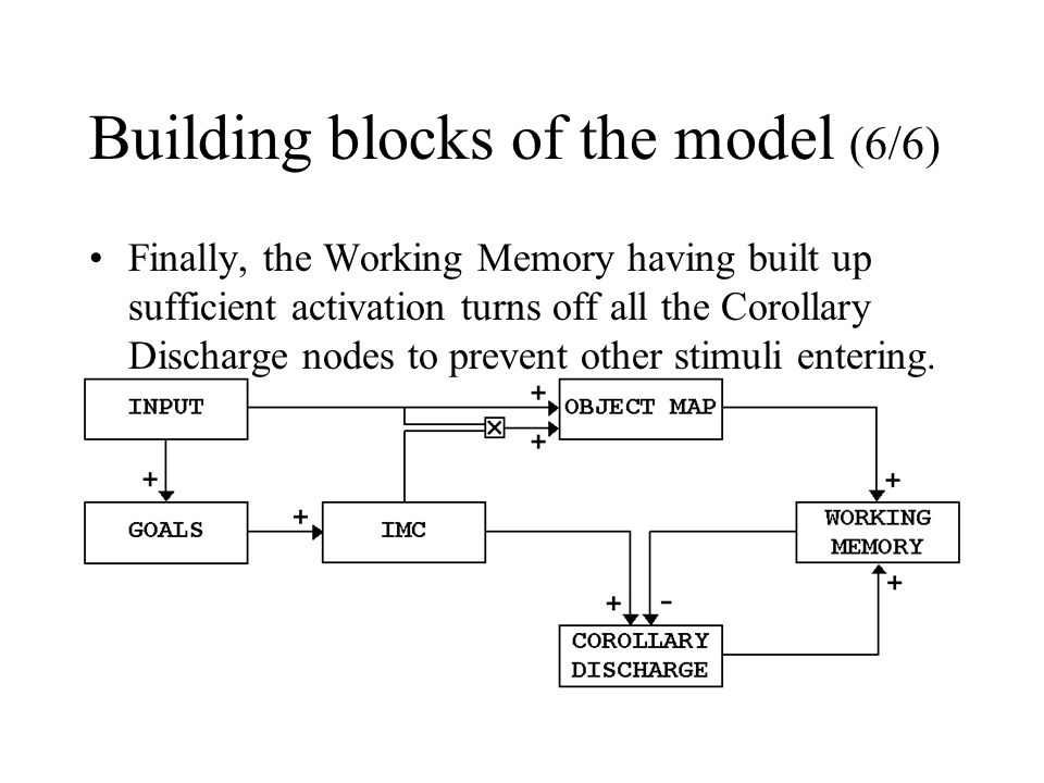 Building blocks of the model (6/6) Finally, the Working Memory having built up sufficient activation turns off all the Corollary Discharge nodes to pr