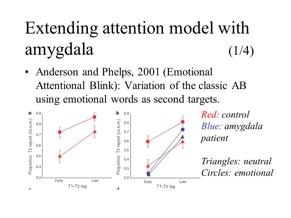 Extending attention model with amygdala (1/4) Anderson and Phelps, 2001 (Emotional Attentional Blink): Variation of the classic AB using emotional wor