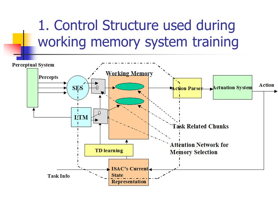 1. Control Structure used during working memory system training