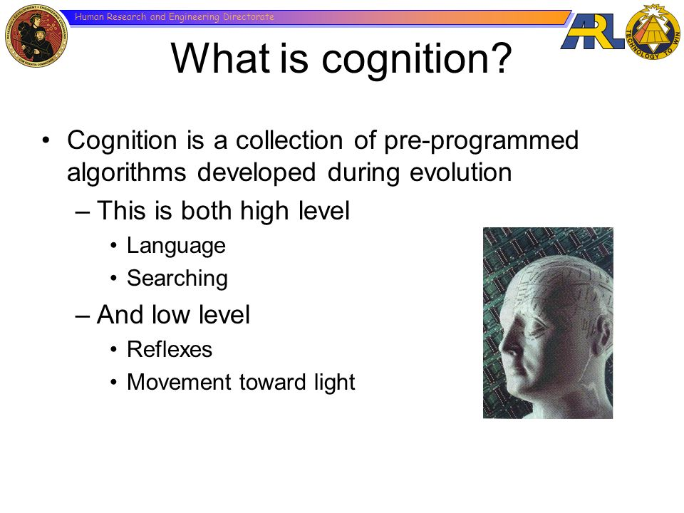 Human Research and Engineering Directorate What is cognition? Cognition is a collection of pre-programmed algorithms developed during evolution –This
