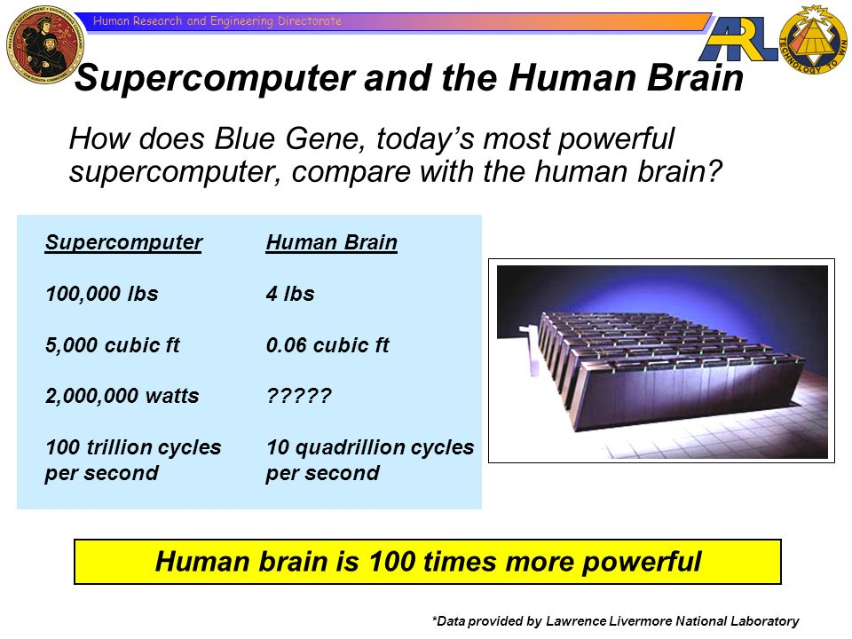 Human Research and Engineering Directorate How does Blue Gene, todays most powerful supercomputer, compare with the human brain? *Data provided by Law