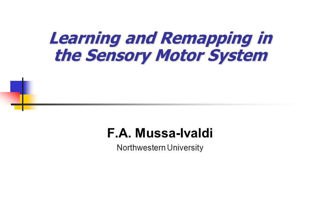 Learning and Remapping in the Sensory Motor System F.A. Mussa-Ivaldi Northwestern University
