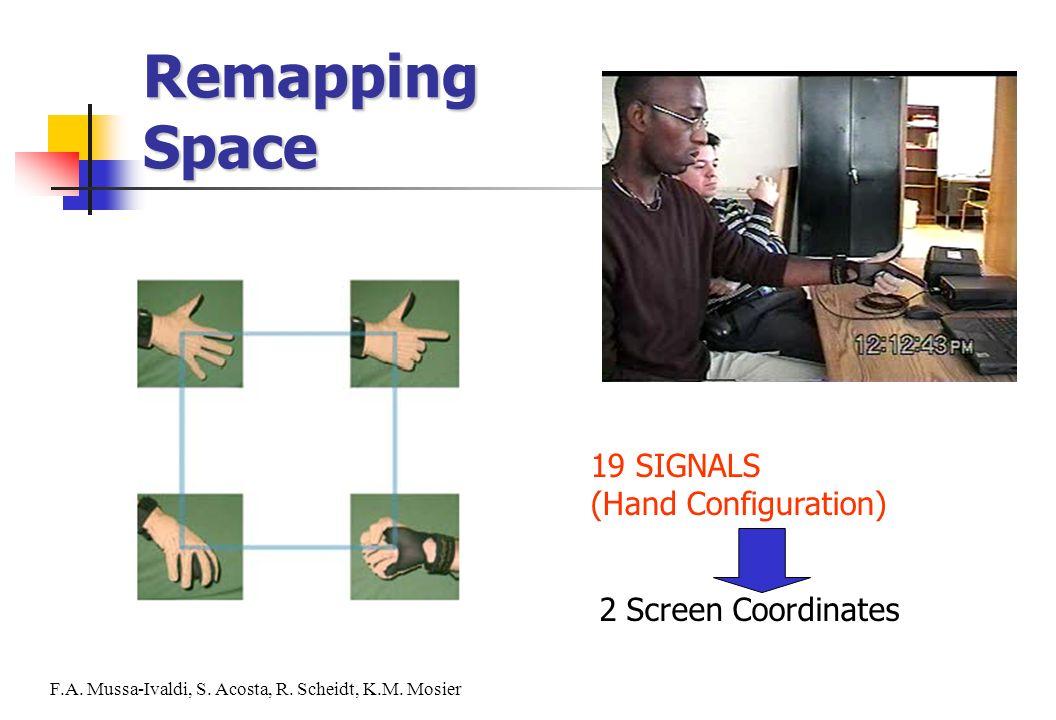 19 SIGNALS (Hand Configuration) 2 Screen Coordinates F.A. Mussa-Ivaldi, S. Acosta, R. Scheidt, K.M. Mosier Remapping Space