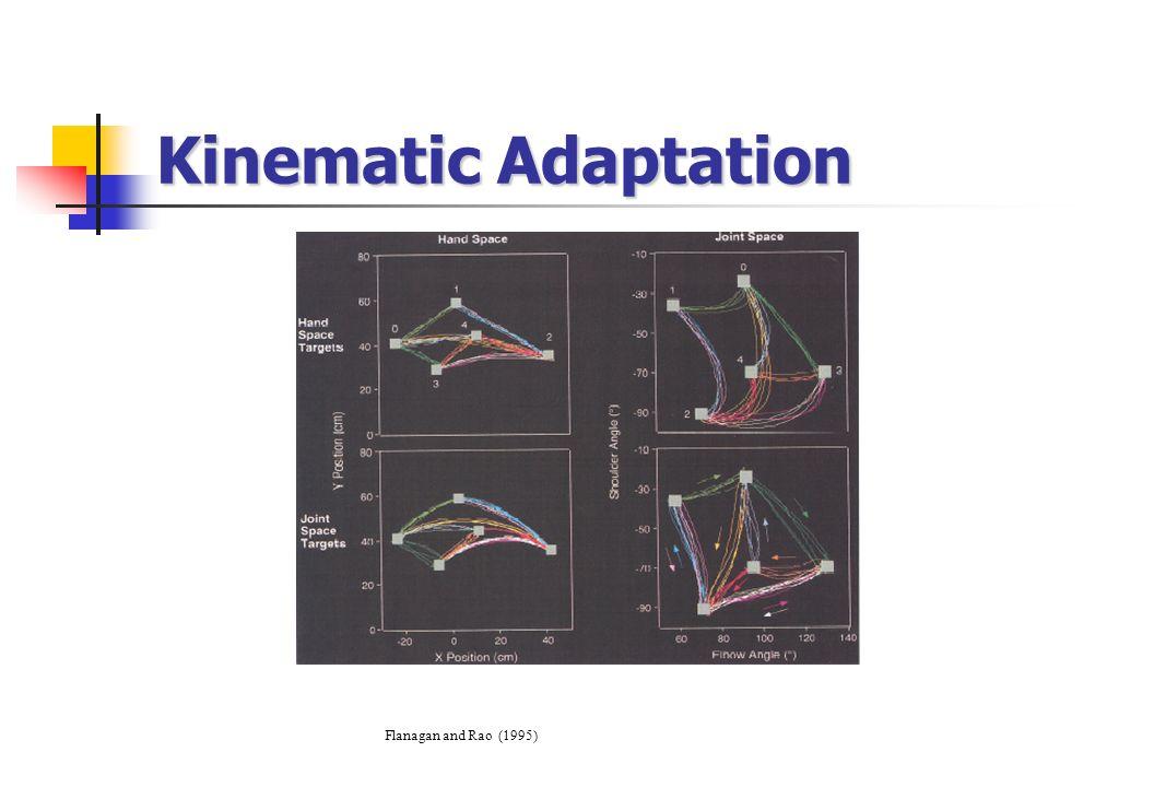 Kinematic Adaptation Flanagan and Rao (1995)
