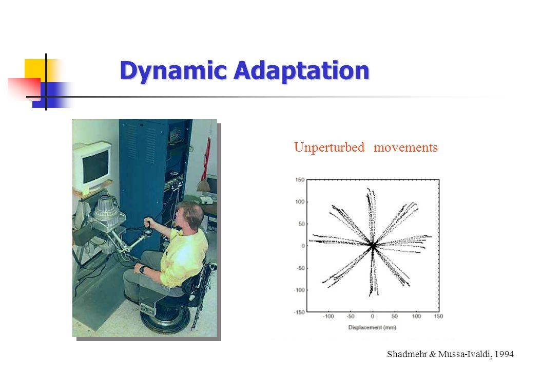 Dynamic Adaptation Unperturbed movements Shadmehr & Mussa-Ivaldi, 1994