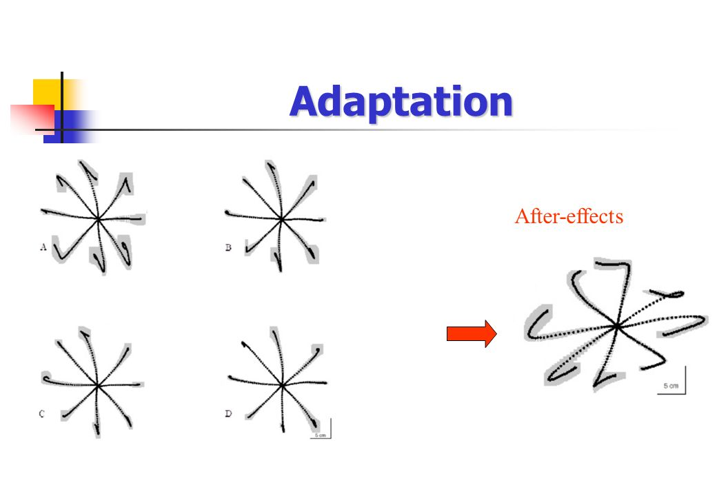 Adaptation After-effects
